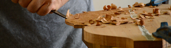 Taller Luthier Francisco Vico